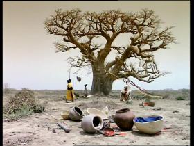 Peter Gabriel Shakin' The Tree (feat Youssou N'Dour)