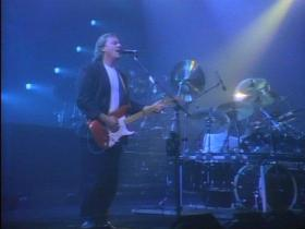 Pink Floyd Delicate Sound Of Thunder (Live 1988) (part 1)
