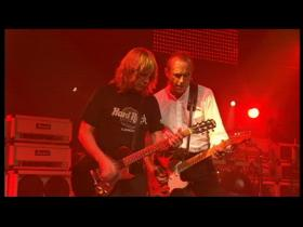 Status Quo 4500 Times (Live)